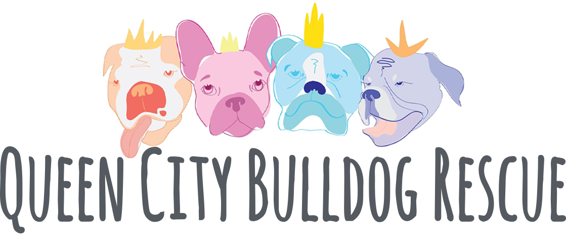 Home - Queen City Bulldog Rescue